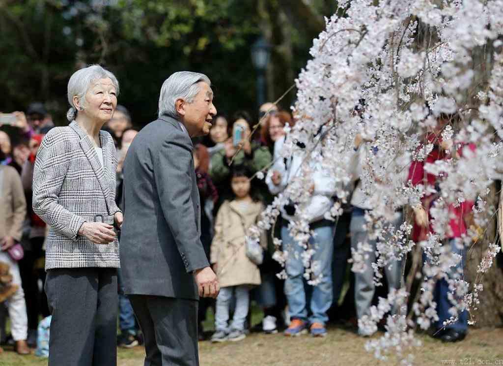 明仁天皇和皇后与民一起赏樱花